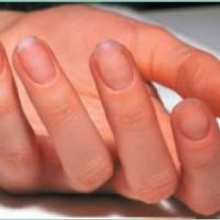 Этапы моделирования ногтей по системе Clarite
